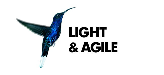 Light and Agile Well intervention